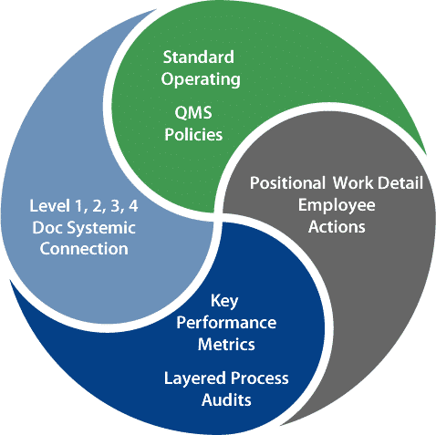 Michigan Business Transformation Consultant
