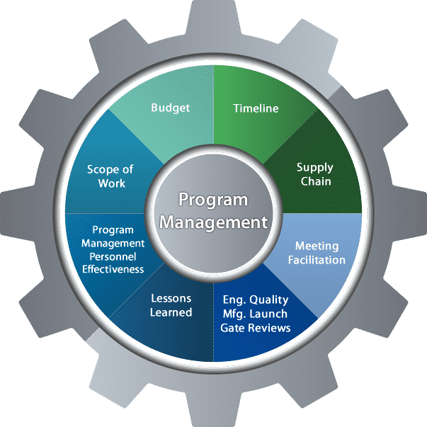 Michigan Business Consulting, Program Management Assessments